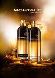 Aoud Night Eau de Parfum 100 ml_