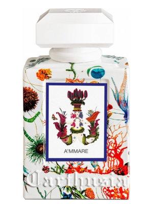 A'MMARE Eau de Parfum 50 ml