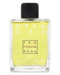 Orangea Extrait de Parfum spray 100 ml
